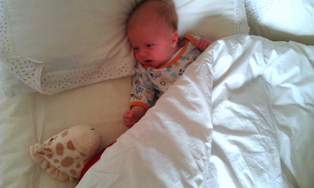 el bebe que parodia peliculas famosas